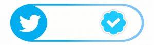 twitter mavi tik işareti